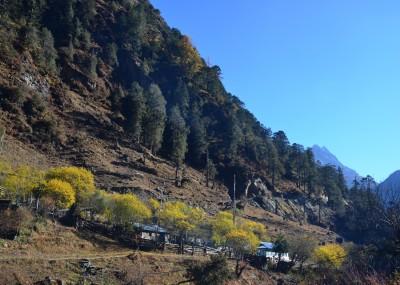 Tsechu village(location of Tsechu Hot springs)